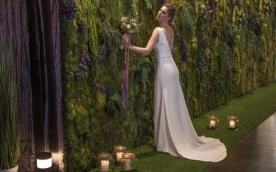 Mi boda en un jardín